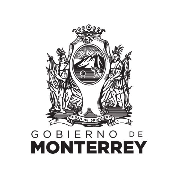 Gobierno de Monterrey Csr Consulting