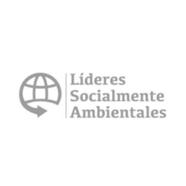 Csr Consulting - Lideres Sociales